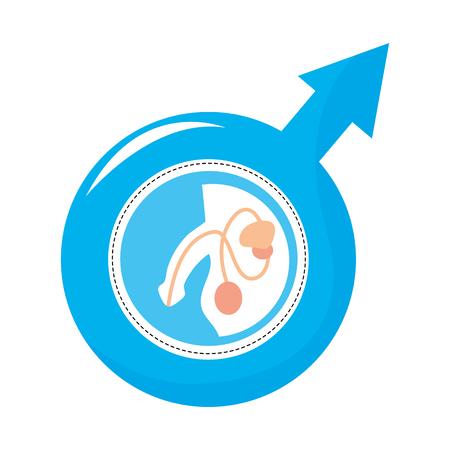 Male urethra symbol