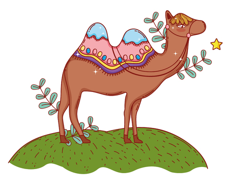 desert camel standing on grass cartoon vector illustration graphic design