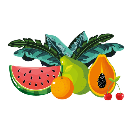 tropical fruits cartoon vector illustration graphic design Ilustrace