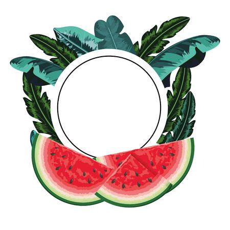 tropical fruit watermelon round icon cartoon vector illustration graphic design