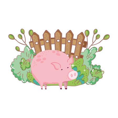 pig animal farm with garden and fence vector illustration design