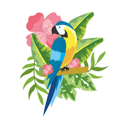 cute tropical parrot cartoon vector illustration graphic design 向量圖像