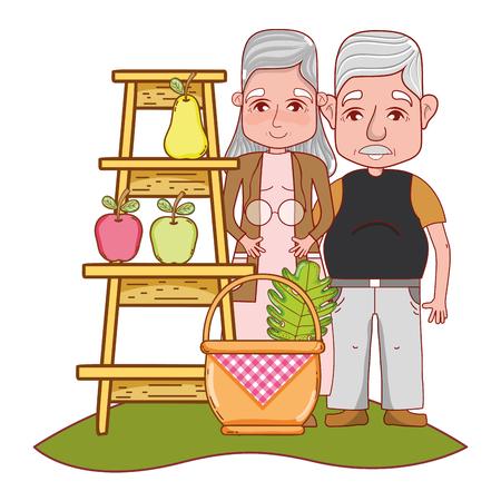 cute grandparents couple picking fruits cartoon vector illustration graphic design