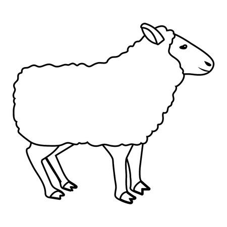 domestic animal sheep cartoon vector illustration graphic design