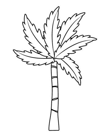 palm tree cartoon vector illustration graphic design Ilustrace
