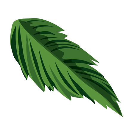 nature leaf cartoon vector illustration graphic design Banco de Imagens - 124996914