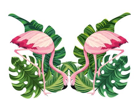 tropical flamingos couple cartoon vector illustration graphic design