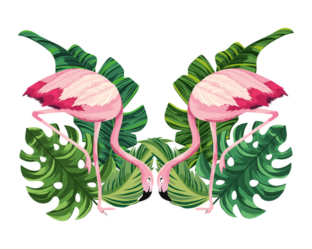 tropical flamingos couple cartoon vector illustration graphic design