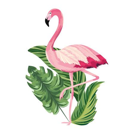 tropical flamingo over leafs cartoon vector illustration graphic design