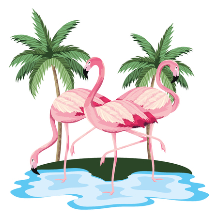 tropical flamingos couple at jungle lake cartoon vector illustration graphic design