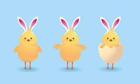 set cute chicks farm animal with broken egg vector illustration