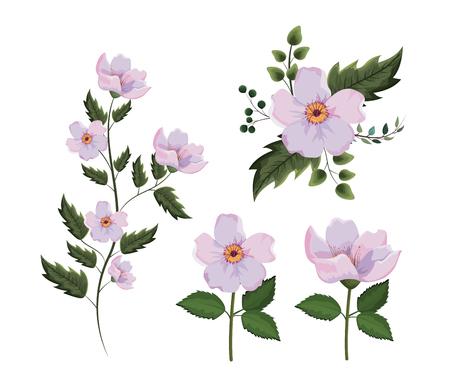 Set exotische Blumen mit Zweigen Blätter Pflanzen Vektor-Illustration Vektorgrafik
