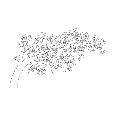 tree branch with flowers vector illustration design