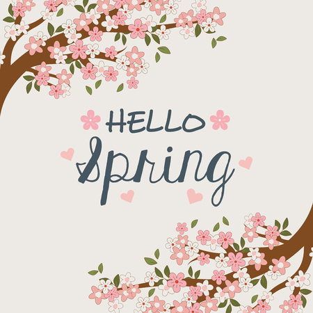hello spring label with tree branch and flowers vector illustration design