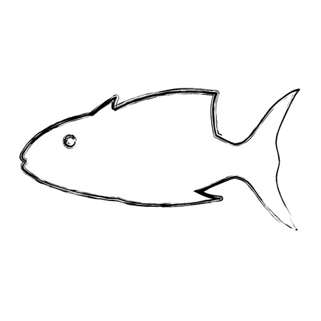 grunge tropical tuna fish nature animal vector illustration