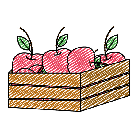 doodle delicious apples fruits inside wood basket vector illustration