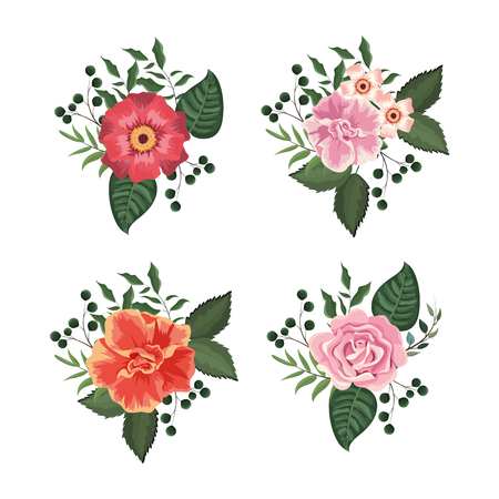 set flowers and roses plants with leaves vector illustration