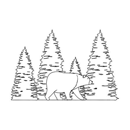 Escena de bosque de pinos con oso grizzly, diseño de ilustraciones vectoriales