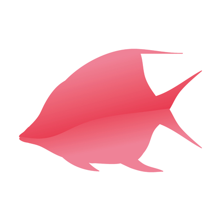 tropical angel fish nature animal vector illustration