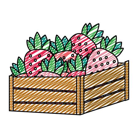doodle delicious strawberries fruits inside wood basket vector illustration