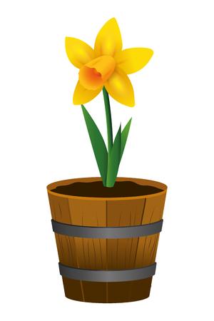 floral tropical rose flower inside plant pot cartoon vector illustration graphic design