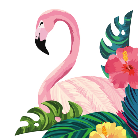 tropical flamingo with flowers cartoon vector illustration graphic design