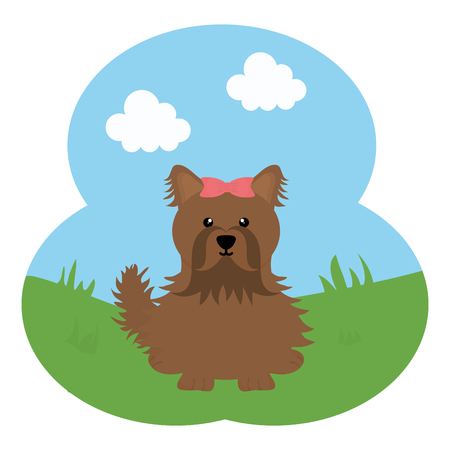 cute little dog pet in the field 일러스트