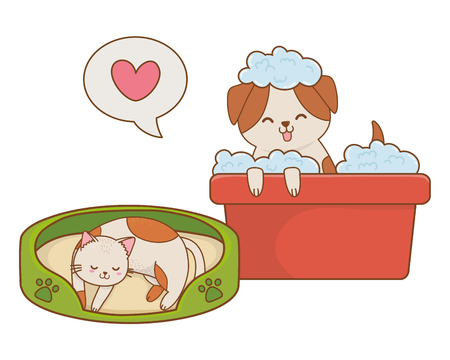 cute funny pets dog and cat taking a shower cartoon vector illustration graphic design  イラスト・ベクター素材