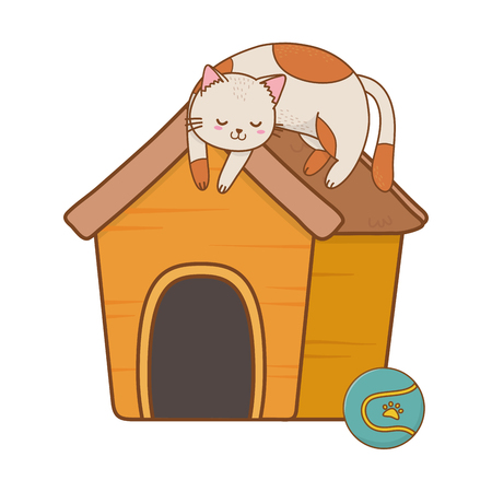 cute funny pet cat with house carrier cartoon vector illustration graphic design