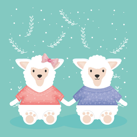 cute couple sheeps with clothes characters vector illustration design