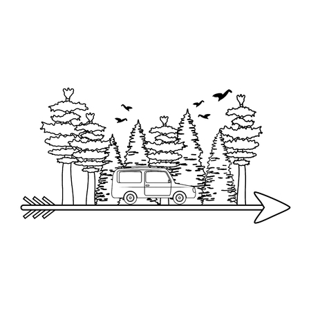pines trees forest scene with car and arrow vector illustration design