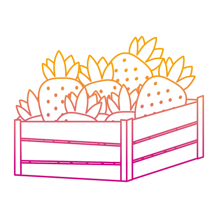 degraded line delicious strawberries fruits inside wood basket vector illustration