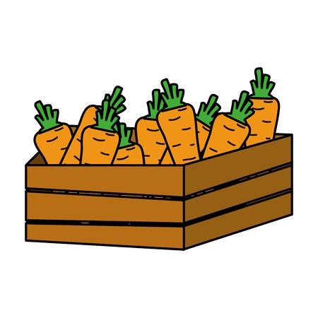 color healthy carrot vegetables inside wood basket vector illustration Ilustrace