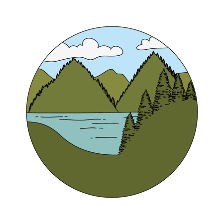 pines trees forest with mountains scene vector illustration design