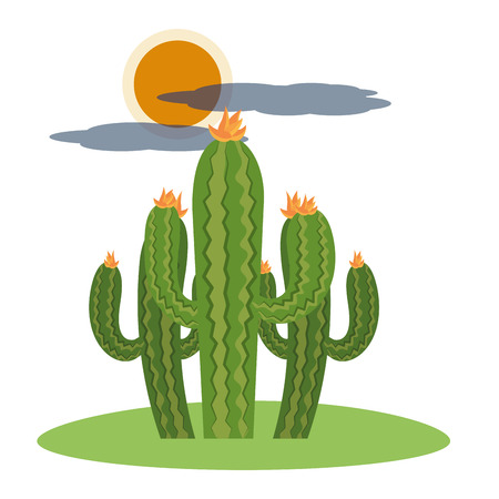 cactus outdoor cartoon vector illustration graphic design