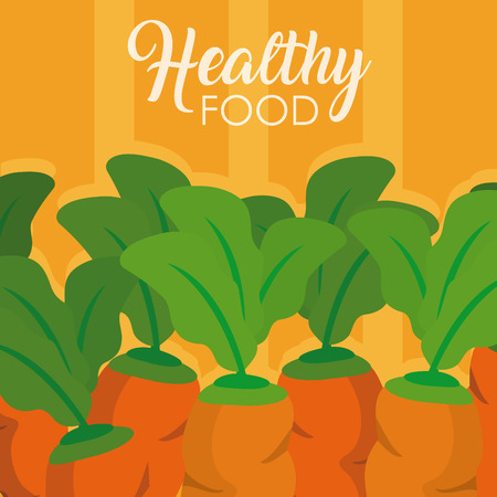 Carrots fresh and organic vegetables vector illustration graphic design