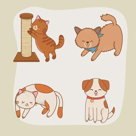 cute little doggy and kitty mascots vector illustration design Zdjęcie Seryjne - 122829725