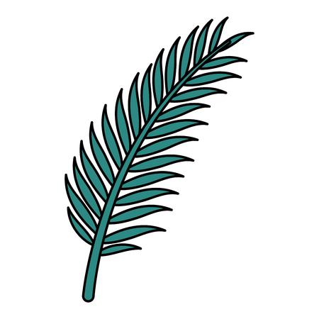 leaf palm tropical icon vector illustration design
