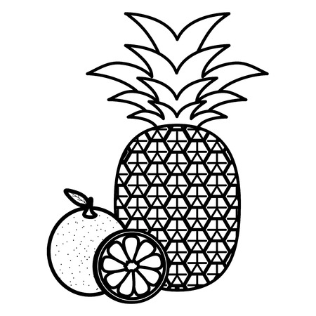 fresh pineapple with oranges vector illustration design