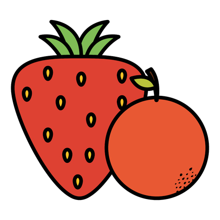 strawberry and orange fresh fruits vector illustration design