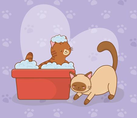 cute little cats mascots characters vector illustration design Ilustração