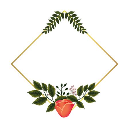 floral tropical flowers frame cartoon vector illustration graphic design Reklamní fotografie - 122564879