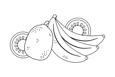 delicious healthy meal fruits mix cartoon vector illustration graphic design