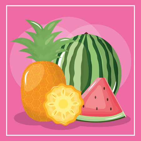 fresh watermelon and pineapple fruits vector illustration design