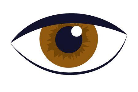 oeil humain, dessin animé, vecteur, illustration, graphisme