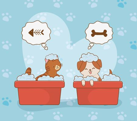 cute little doggy and kitty mascots vector illustration design