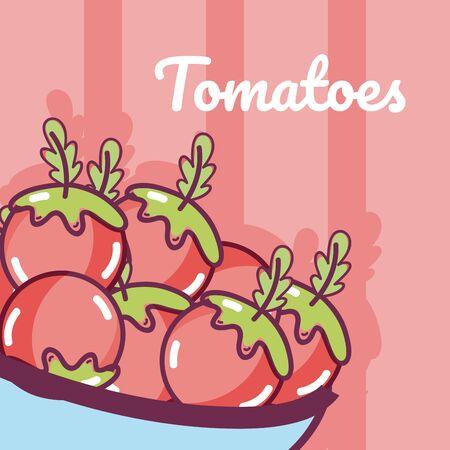 Tomatoes on bowl fresh vegetables cartoons vector illustration graphic design Ilustração