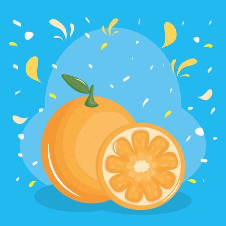 fresh orange citrus fruit with confetti splash