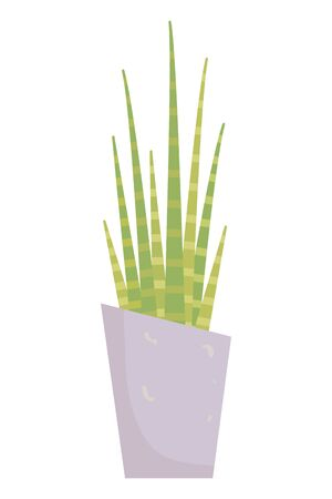 Isolated plant with leaves design