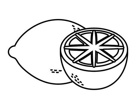 delicious tasty food fruit grapefruit cartoon vector illustration graphic design
